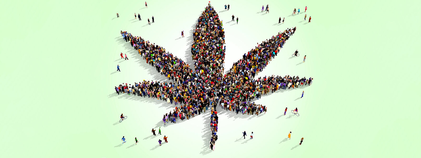 cannabis-community